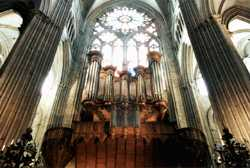 grand orgue de la cathedrale